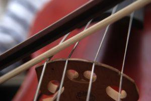 cello-663563